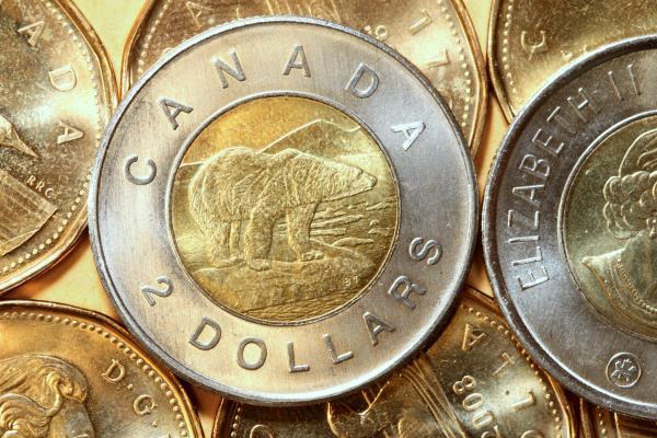 Dettes et actifs des familles canadiennes âgées - thumbnail