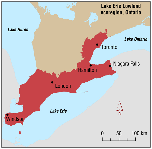 Map Lake Erie Canada Lake Erie Lowland
