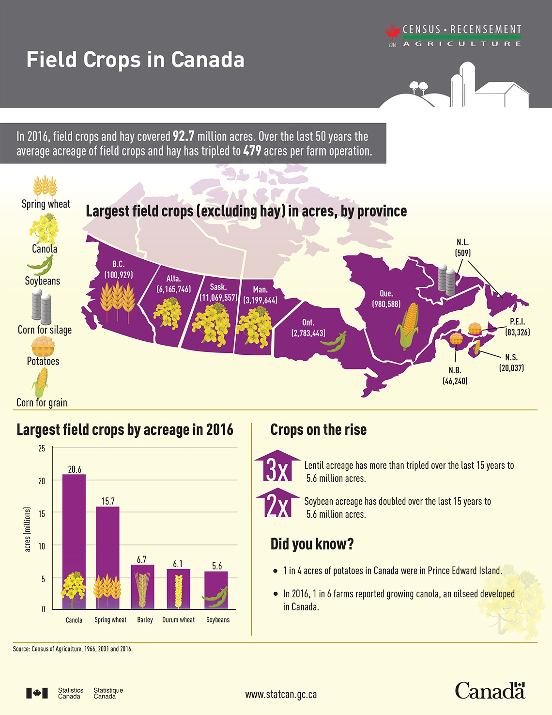 Infographic: Field Crops in Canada
