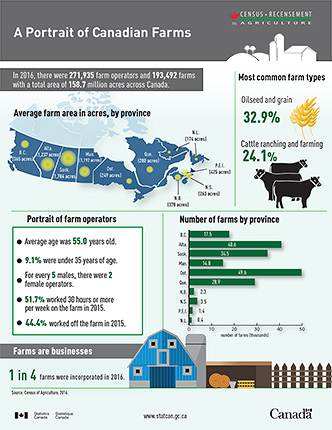 A Portrait of Canadian Farms infographic thumbnail