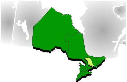 Image de région économique