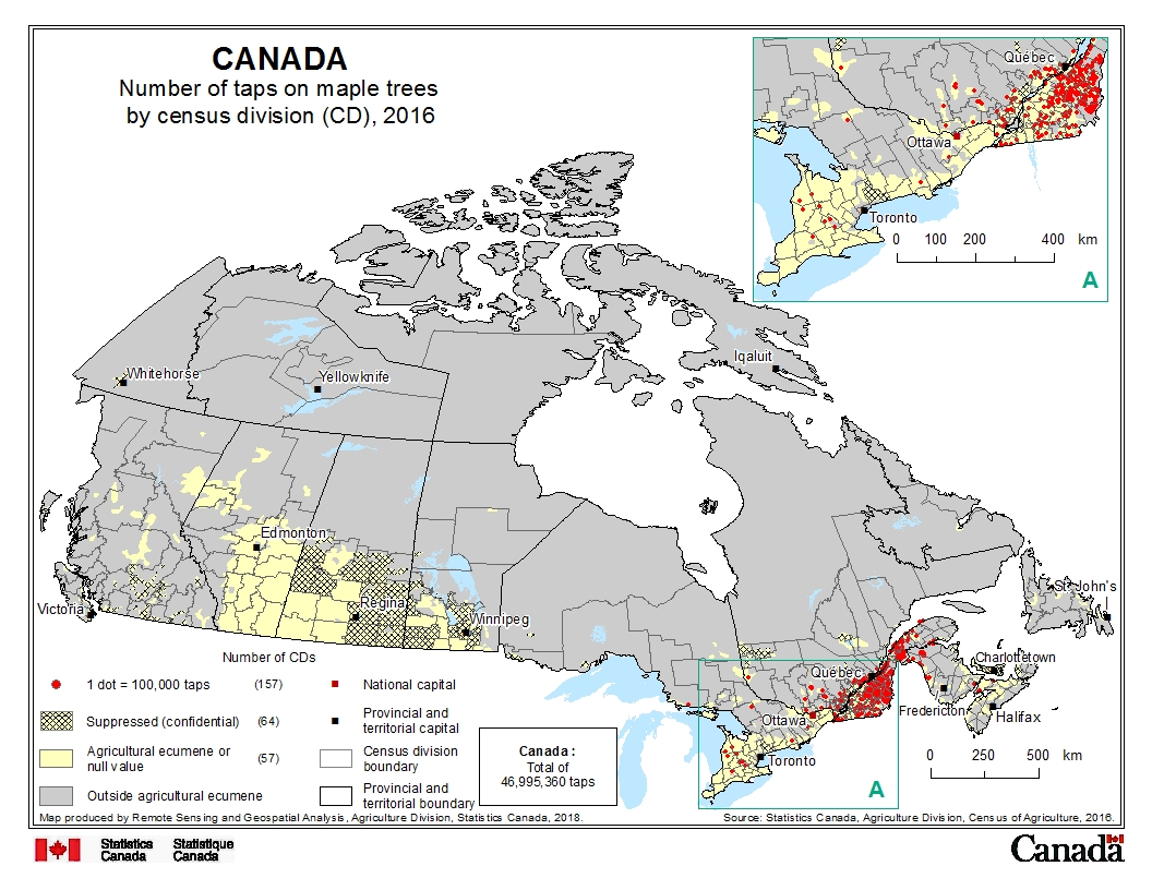 Maple Trees In Canada Map Number of taps on maple trees by census division (CD), 2016